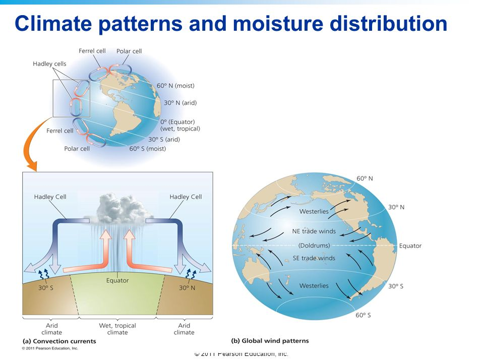 © 2011 Pearson Education, Inc. Climate patterns and moisture distribution