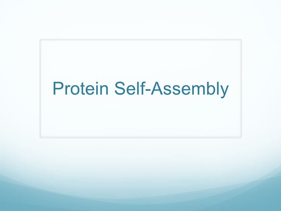 Protein Self-Assembly