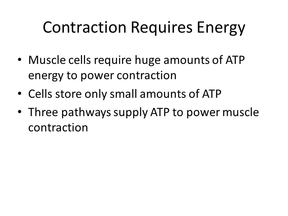 Contraction Requires Energy Muscle cells require huge amounts of ATP energy to power contraction Cells store only small amounts of ATP Three pathways