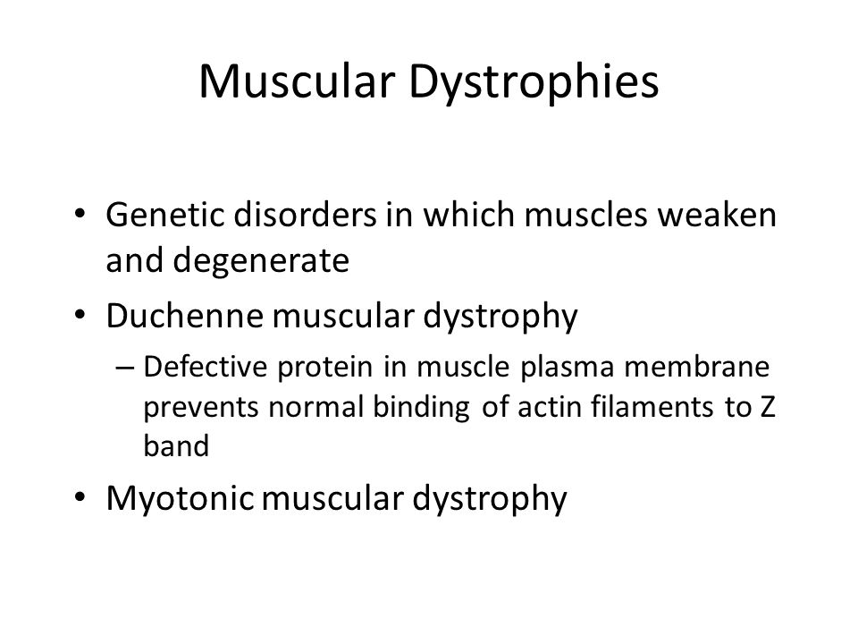 Muscular Dystrophies Genetic disorders in which muscles weaken and degenerate Duchenne muscular dystrophy – Defective protein in muscle plasma membran