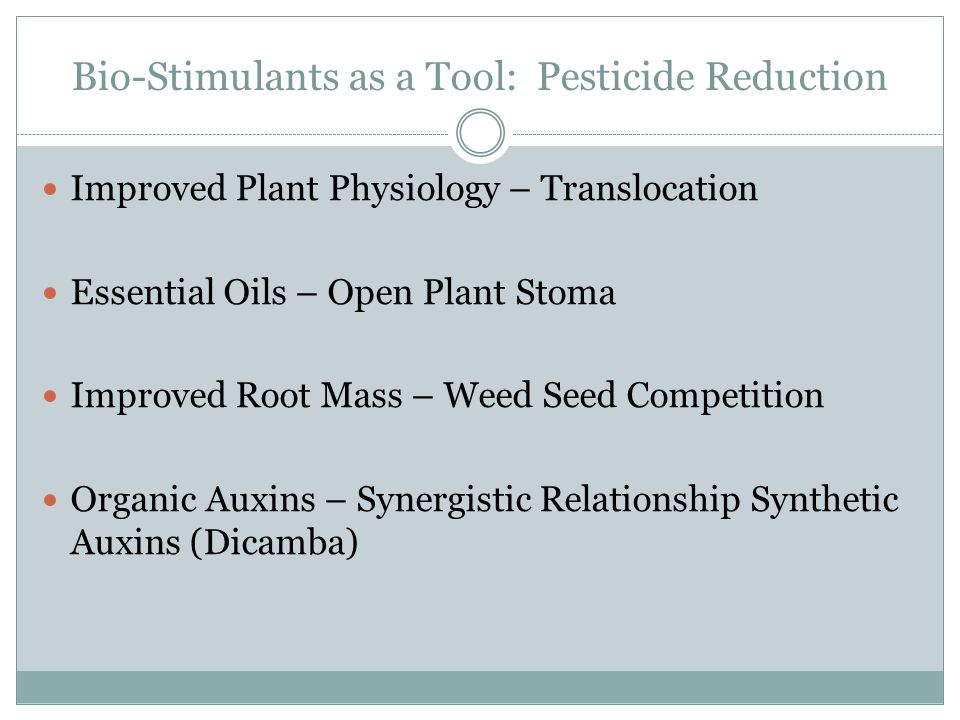 Bio-Stimulants as a Tool: Pesticide Reduction Improved Plant Physiology – Translocation Essential Oils – Open Plant Stoma Improved Root Mass – Weed Seed Competition Organic Auxins – Synergistic Relationship Synthetic Auxins (Dicamba)