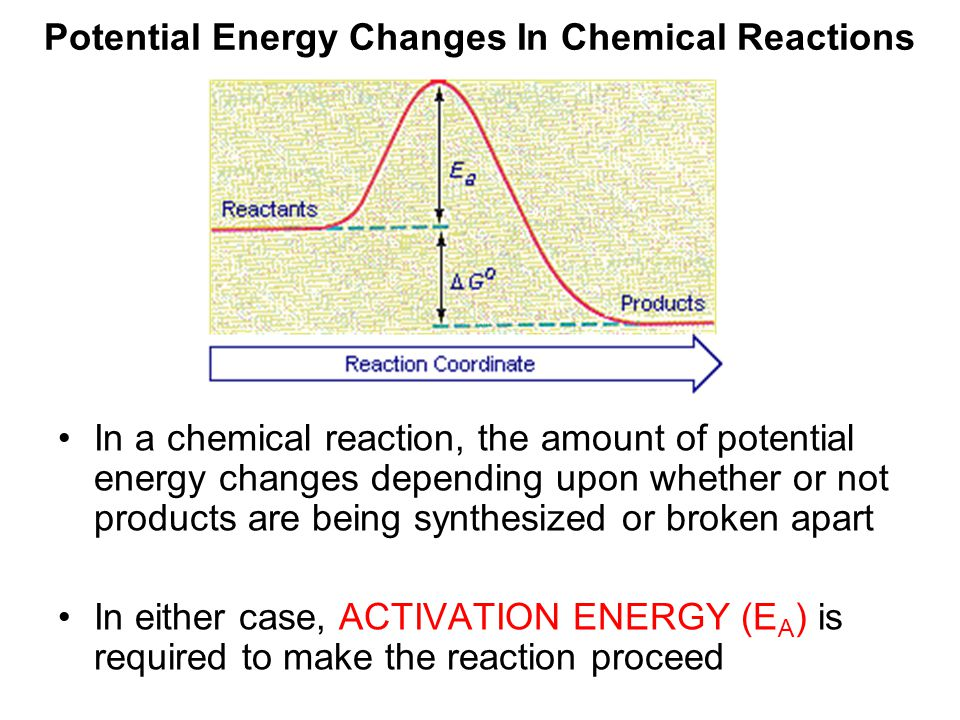 Potential Energy Changes In Chemical Reactions In a chemical reaction, the amount of potential energy changes depending upon whether or not products are being synthesized or broken apart In either case, ACTIVATION ENERGY (E A ) is required to make the reaction proceed