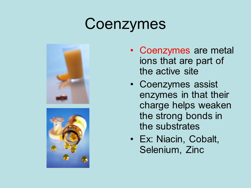 Coenzymes Coenzymes are metal ions that are part of the active site Coenzymes assist enzymes in that their charge helps weaken the strong bonds in the substrates Ex: Niacin, Cobalt, Selenium, Zinc