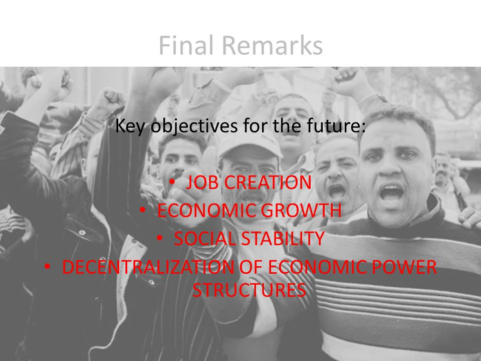 Final Remarks Key objectives for the future: JOB CREATION ECONOMIC GROWTH SOCIAL STABILITY DECENTRALIZATION OF ECONOMIC POWER STRUCTURES
