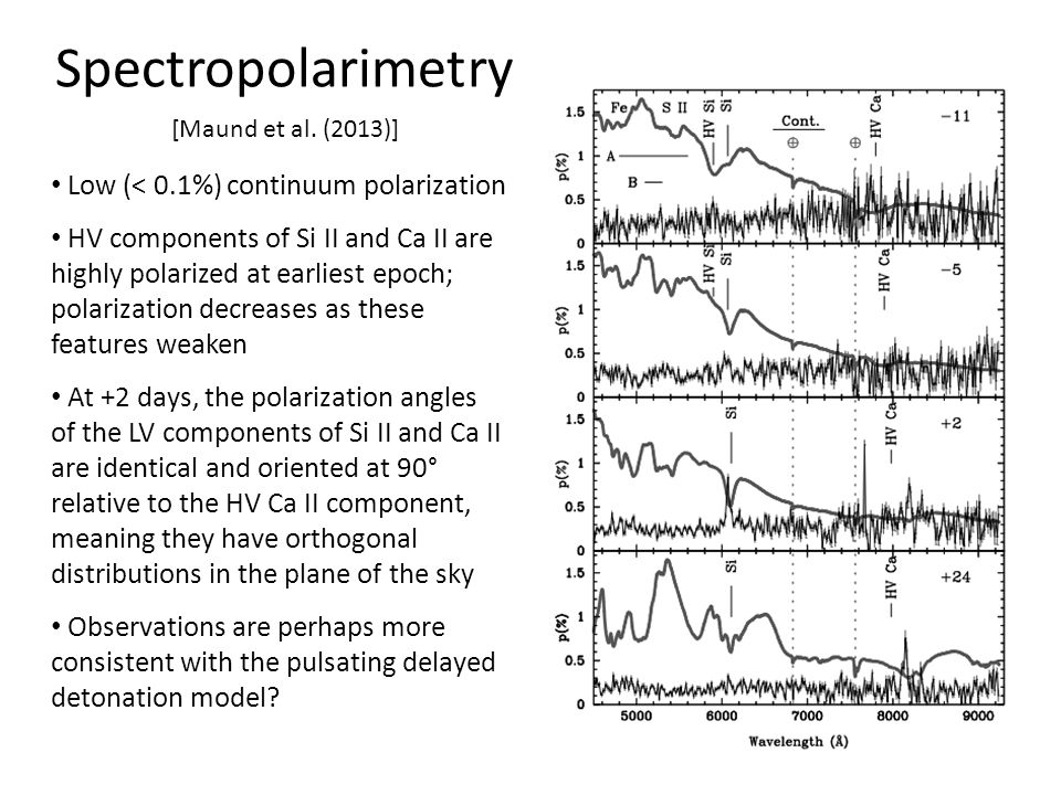 Spectropolarimetry Low (< 0.1%) continuum polarization HV components of Si II and Ca II are highly polarized at earliest epoch; polarization decreases as these features weaken At +2 days, the polarization angles of the LV components of Si II and Ca II are identical and oriented at 90° relative to the HV Ca II component, meaning they have orthogonal distributions in the plane of the sky Observations are perhaps more consistent with the pulsating delayed detonation model.