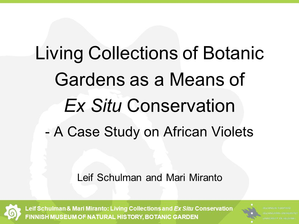 Leif Schulman & Mari Miranto: Living Collections and Ex Situ Conservation FINNISH MUSEUM OF NATURAL HISTORY, BOTANIC GARDEN Living Collections of Botanic Gardens as a Means of Ex Situ Conservation - A Case Study on African Violets Leif Schulman and Mari Miranto