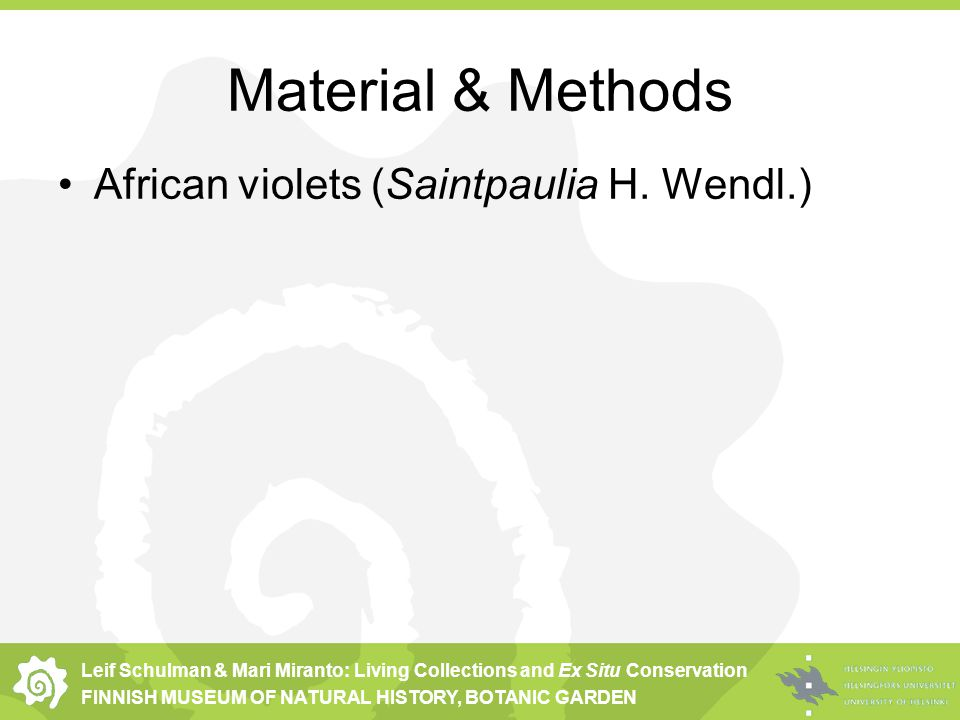 Leif Schulman & Mari Miranto: Living Collections and Ex Situ Conservation FINNISH MUSEUM OF NATURAL HISTORY, BOTANIC GARDEN Material & Methods African violets (Saintpaulia H.