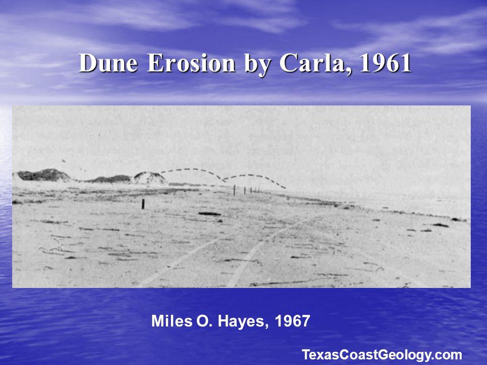 Dune Erosion by Carla, 1961 Miles O. Hayes, 1967 TexasCoastGeology.com