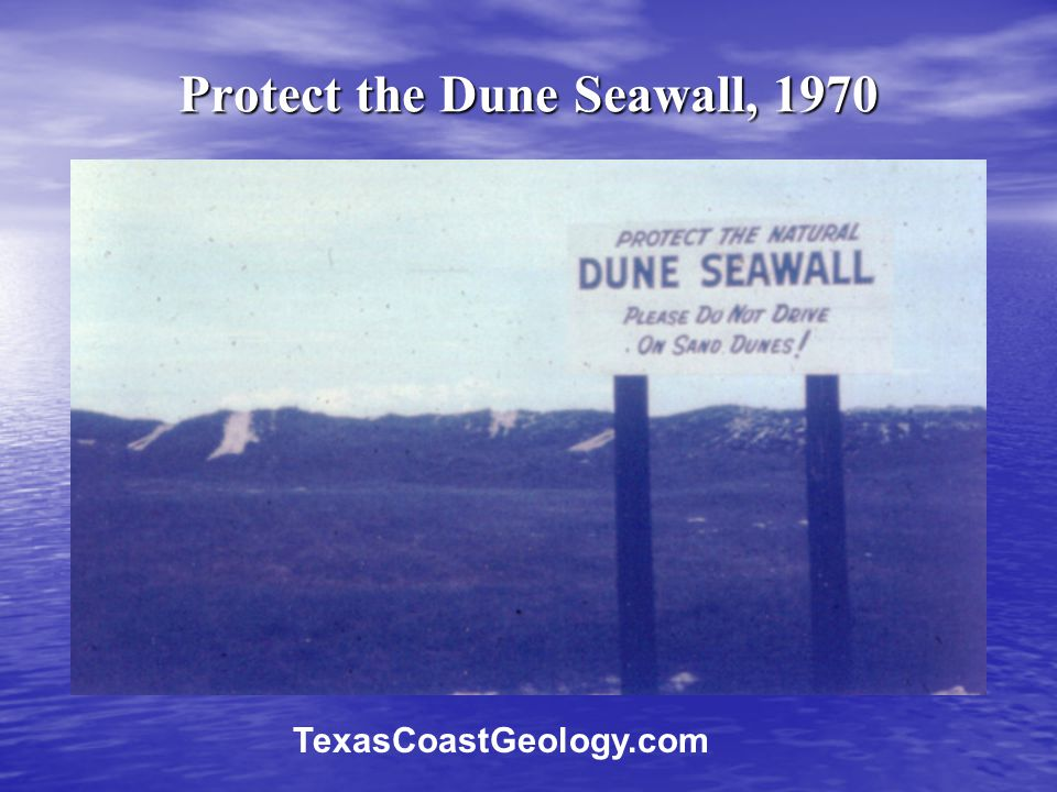 Protect the Dune Seawall, 1970 TexasCoastGeology.com