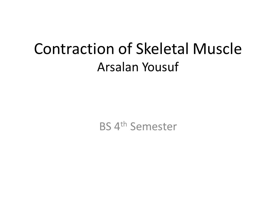 Anatomy of Skeletal Muscles All skeletal muscles are composed of fibres ranging from 10-80 uM in diameter.