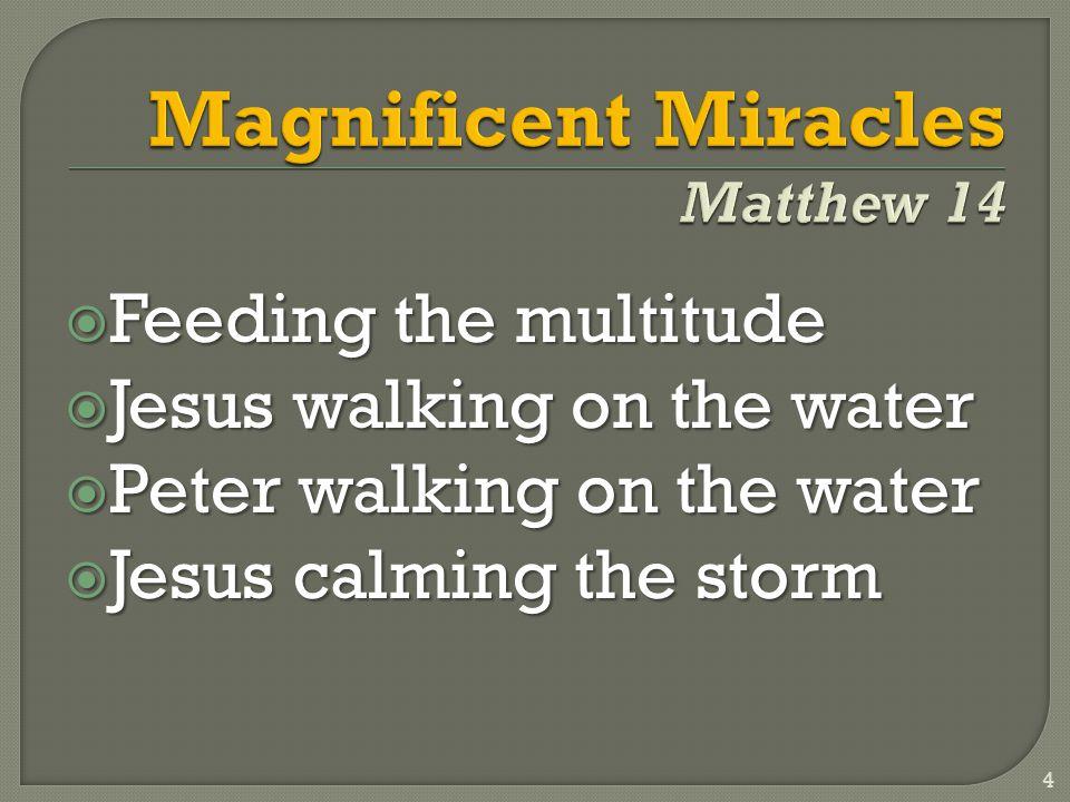  Feeding the multitude  Jesus walking on the water  Peter walking on the water  Jesus calming the storm 4