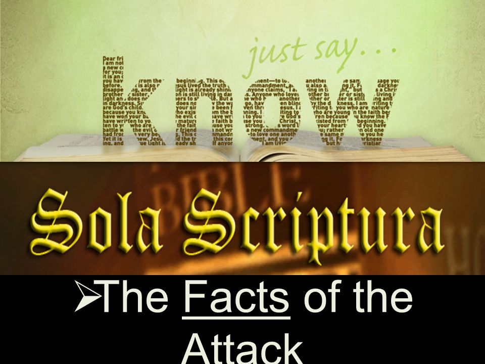 Facts  The Facts of the Attack