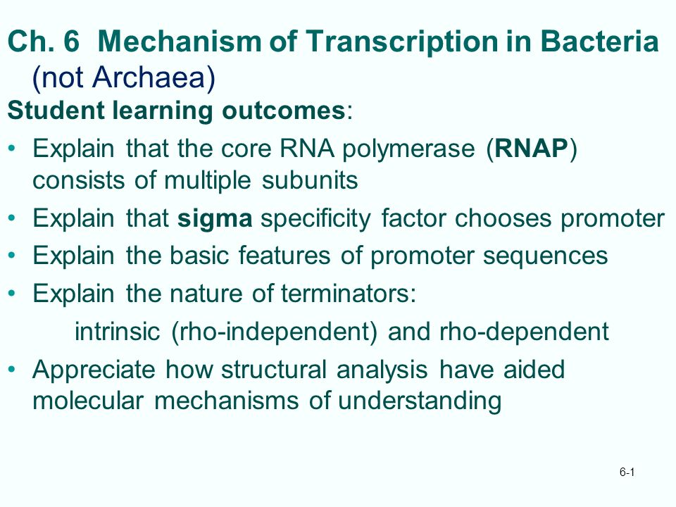 Ch. 6 Mechanism of Transcription in Bacteria (not Archaea) Student learning outcomes: Explain that the core RNA polymerase (RNAP) consists of multiple