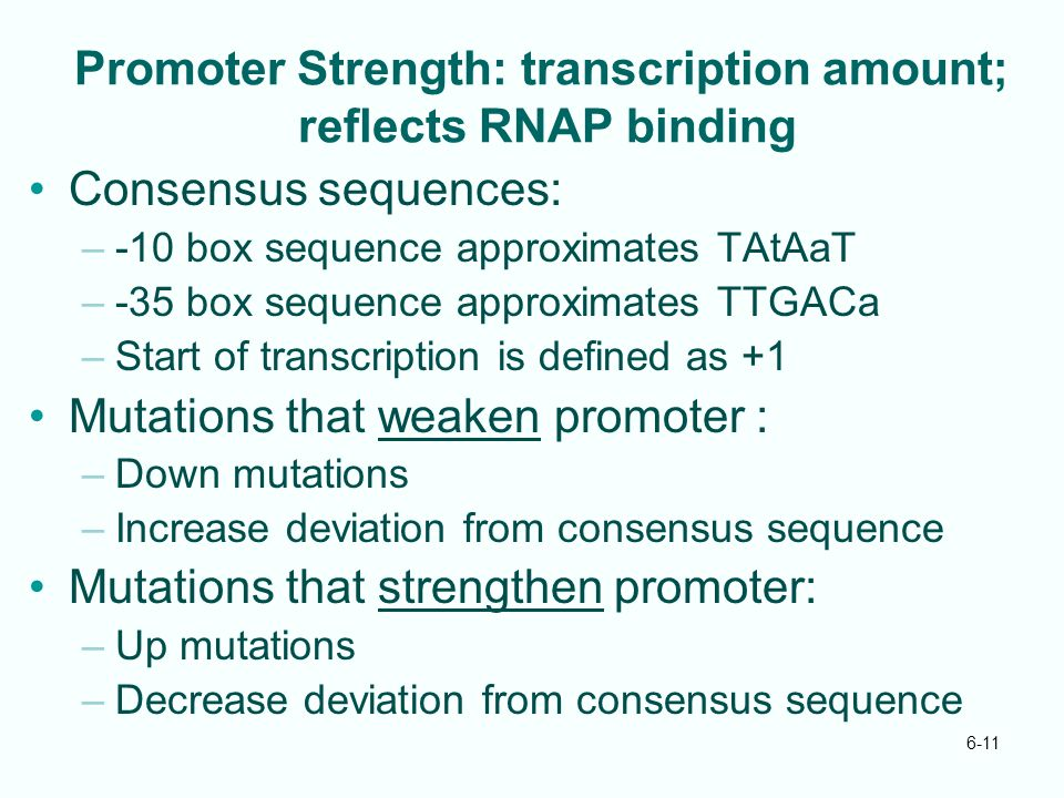 6-11 Promoter Strength: transcription amount; reflects RNAP binding Consensus sequences: –-10 box sequence approximates TAtAaT –-35 box sequence appro
