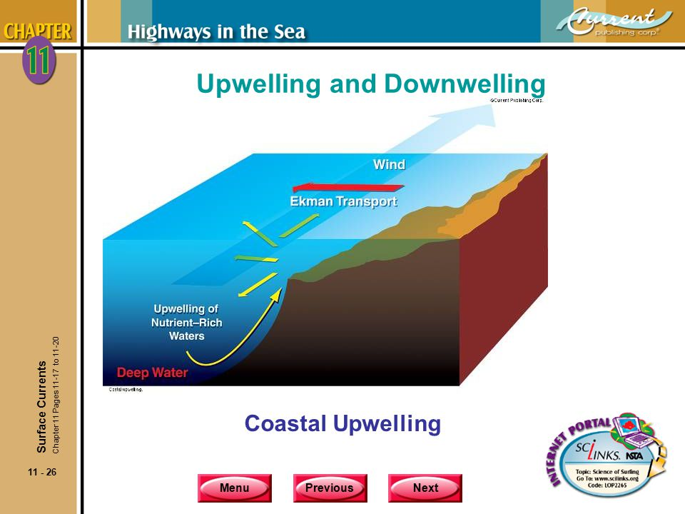 MenuPreviousNext 11 - 26 Upwelling and Downwelling Coastal Upwelling Surface Currents Chapter 11 Pages 11-17 to 11-20