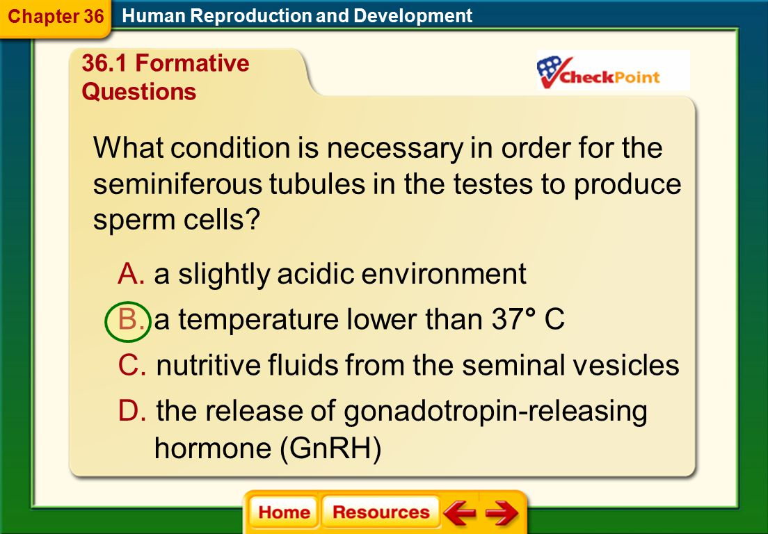 The two meiotic divisions of egg production yield how many eggs? A. one B. two C. four D. six Human Reproduction and Development Chapter Diagnostic Qu