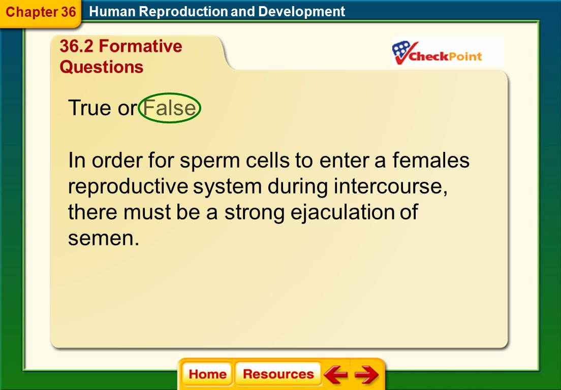 D. Blood supply to the endometrium decreases. What prevents the menstrual cycle from continuing once an egg has been fertilized? Human Reproduction an