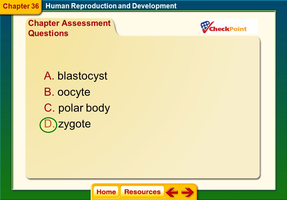 What term is used to describe a fertilized egg? Human Reproduction and Development Chapter Assessment Questions Chapter 36