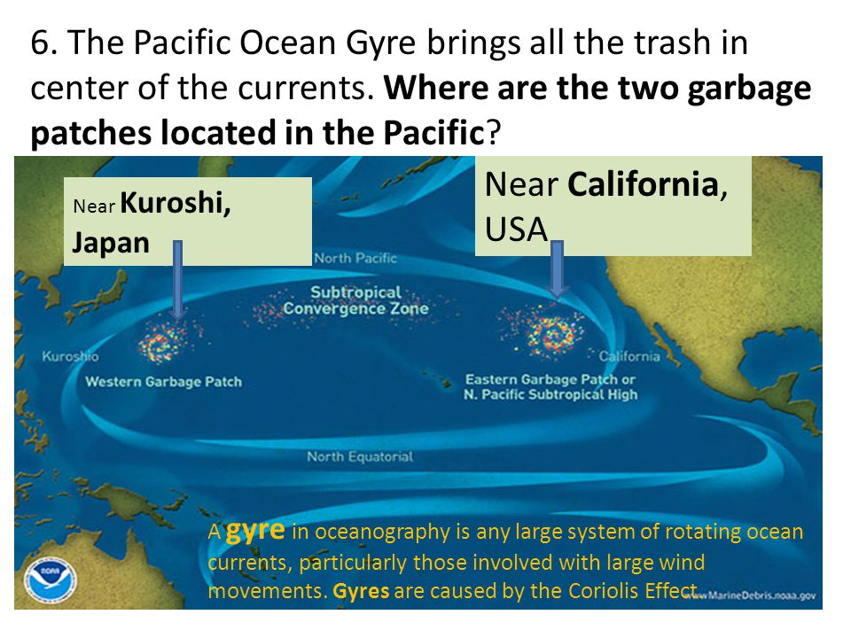 6. The Pacific Ocean Gyre brings all the trash in center of the currents. Where are the two garbage patches located in the Pacific? Near Kuroshi, Japa