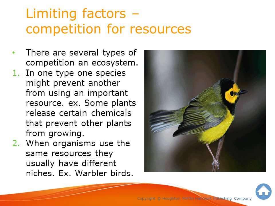 Limiting factors – competition for resources Copyright © Houghton Mifflin Harcourt Publishing Company There are several types of competition an ecosystem.