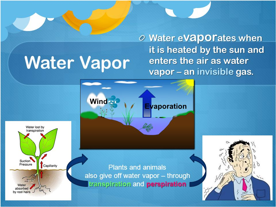 Water e vapor ates when it is heated by the sun and enters the air as water vapor – an invisible gas.
