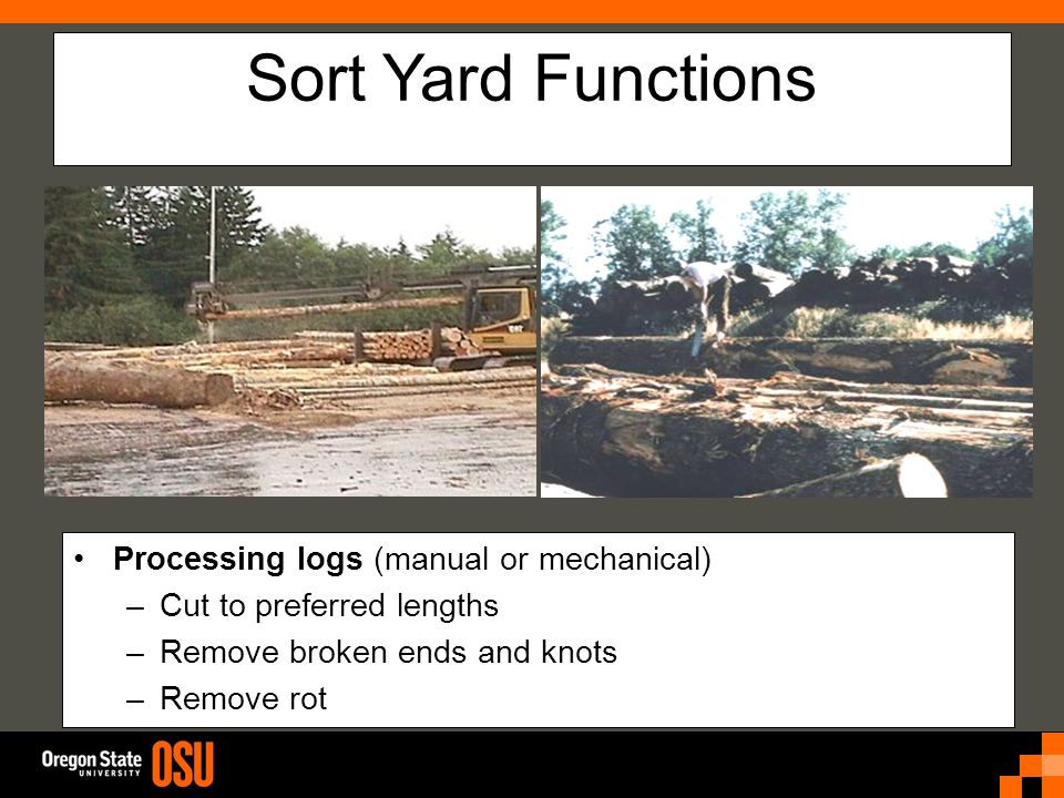Sort Yard Functions Processing logs (manual or mechanical) –Cut to preferred lengths –Remove broken ends and knots –Remove rot