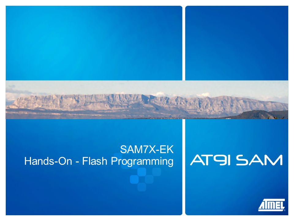 SAM7X-EK Hands-On - Flash Programming