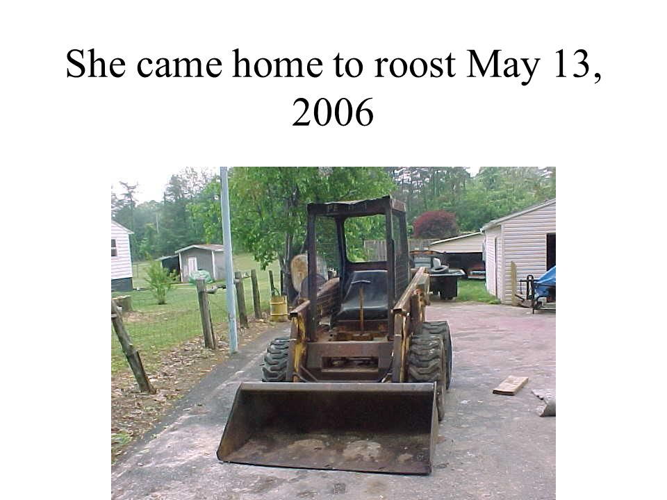 She came home to roost May 13, 2006