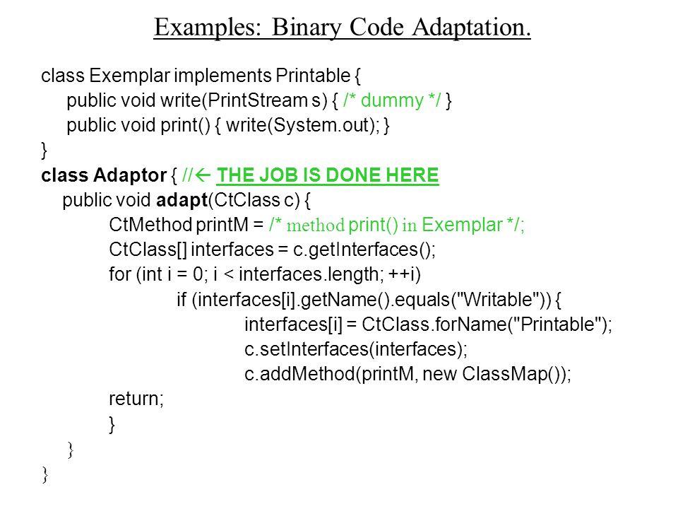 Examples: Binary Code Adaptation.