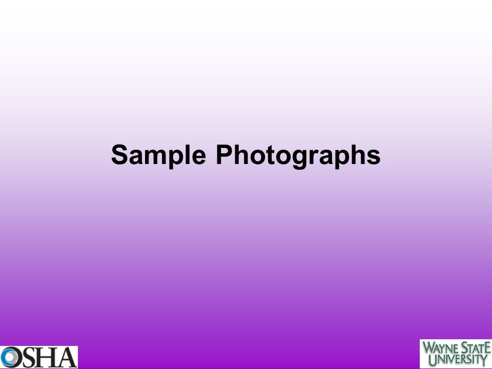 Sample Photographs
