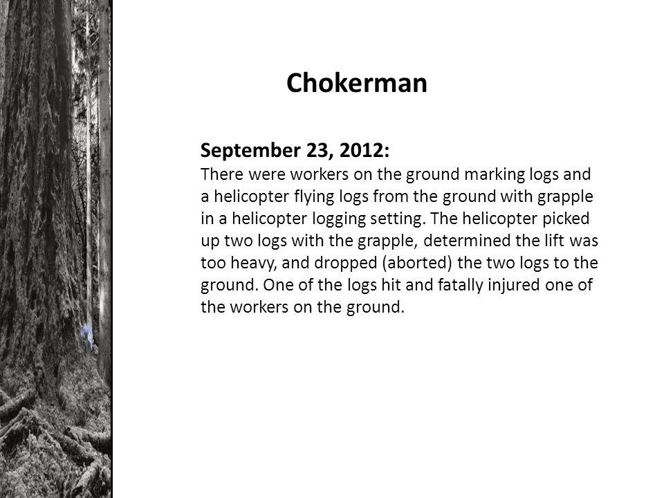 Chokerman September 23, 2012: There were workers on the ground marking logs and a helicopter flying logs from the ground with grapple in a helicopter logging setting.