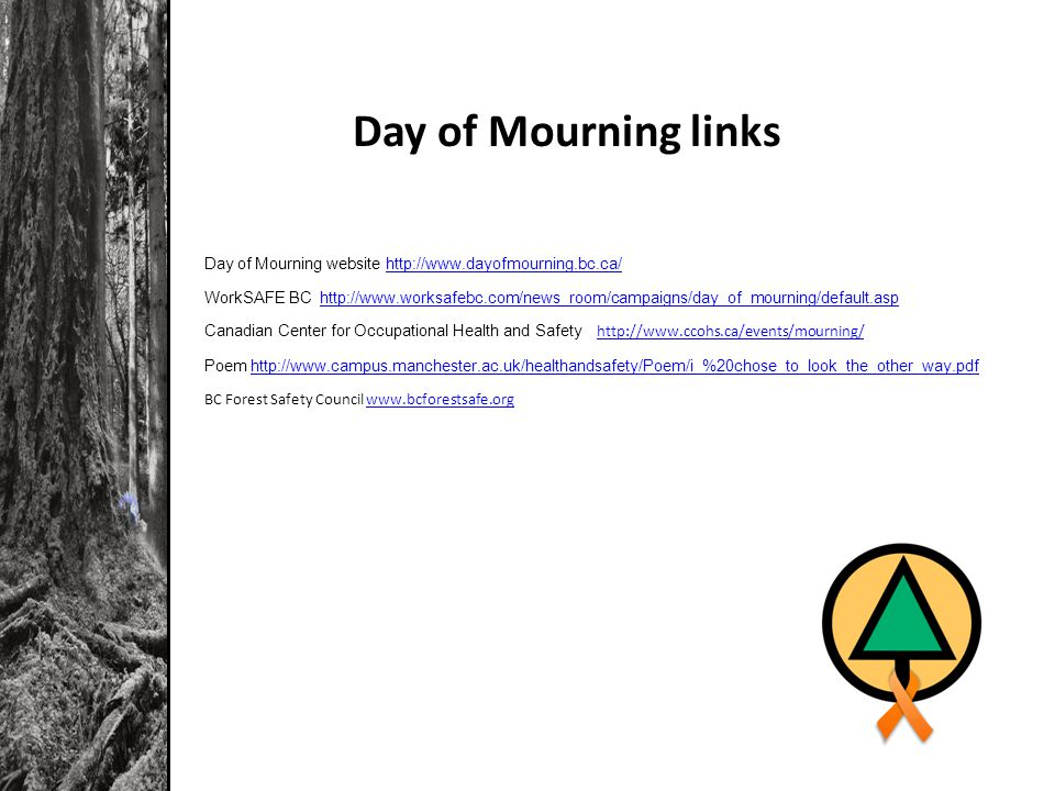 Day of Mourning website http://www.dayofmourning.bc.ca/http://www.dayofmourning.bc.ca/ WorkSAFE BC http://www.worksafebc.com/news_room/campaigns/day_of_mourning/default.asphttp://www.worksafebc.com/news_room/campaigns/day_of_mourning/default.asp Canadian Center for Occupational Health and Safety http://www.ccohs.ca/events/mourning/http://www.ccohs.ca/events/mourning/ Poem http://www.campus.manchester.ac.uk/healthandsafety/Poem/i_%20chose_to_look_the_other_way.pdfhttp://www.campus.manchester.ac.uk/healthandsafety/Poem/i_%20chose_to_look_the_other_way.pdf BC Forest Safety Council www.bcforestsafe.orgwww.bcforestsafe.org Day of Mourning links