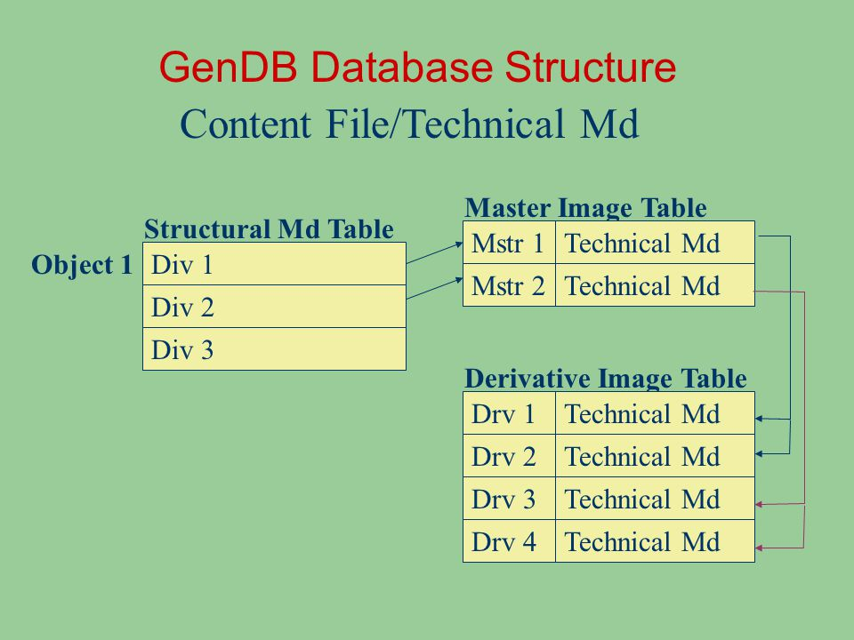 Populating the Database Tables Web interface: manual input of structural and descriptive metadata Digitization Management modules – Generate work orders to guide digitization process – Import content file information and technical metadata coming out of digitization process Batch loader: batch input based on TEI encodings, legacy metadata