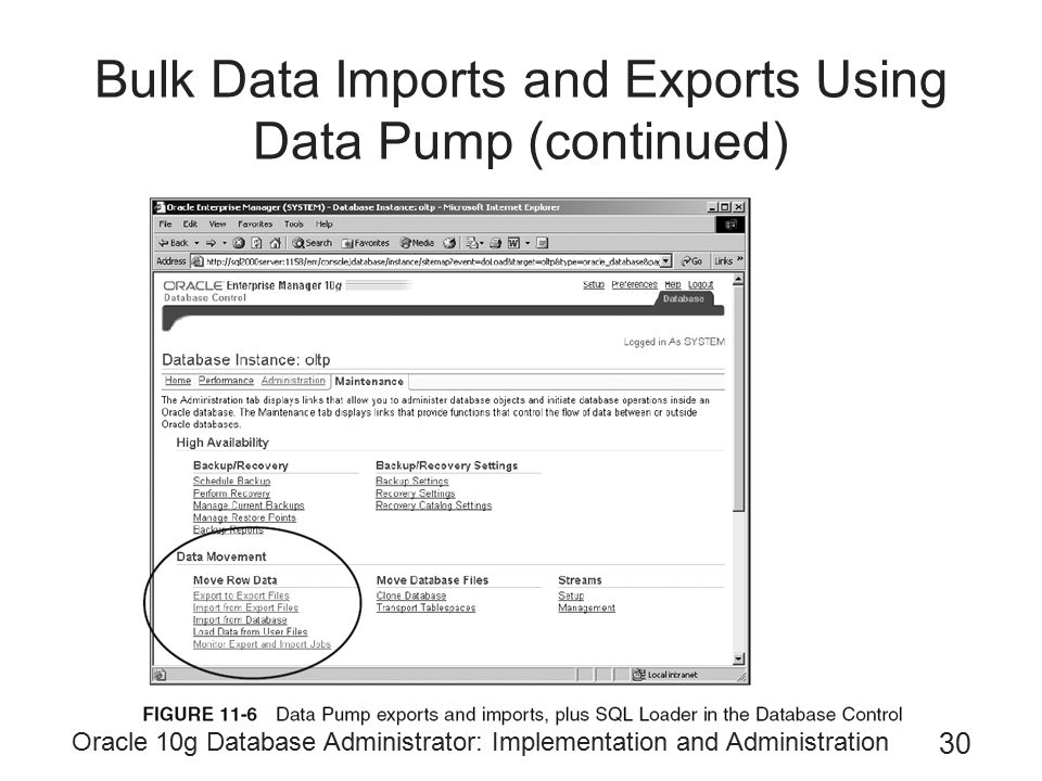 Oracle 10g Database Administrator: Implementation and Administration 30 Bulk Data Imports and Exports Using Data Pump (continued)