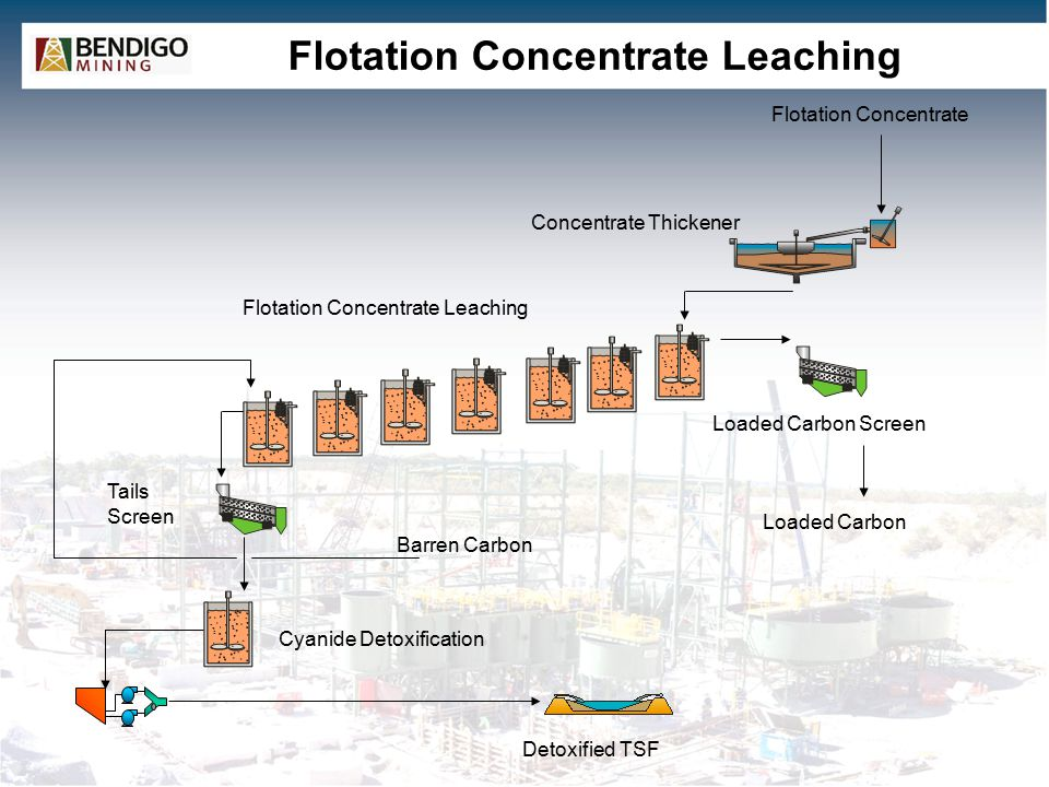 Flotation Concentrate Leaching Detoxified TSF Flotation Concentrate Flotation Concentrate Leaching Concentrate Thickener Tails Screen Barren Carbon Cy