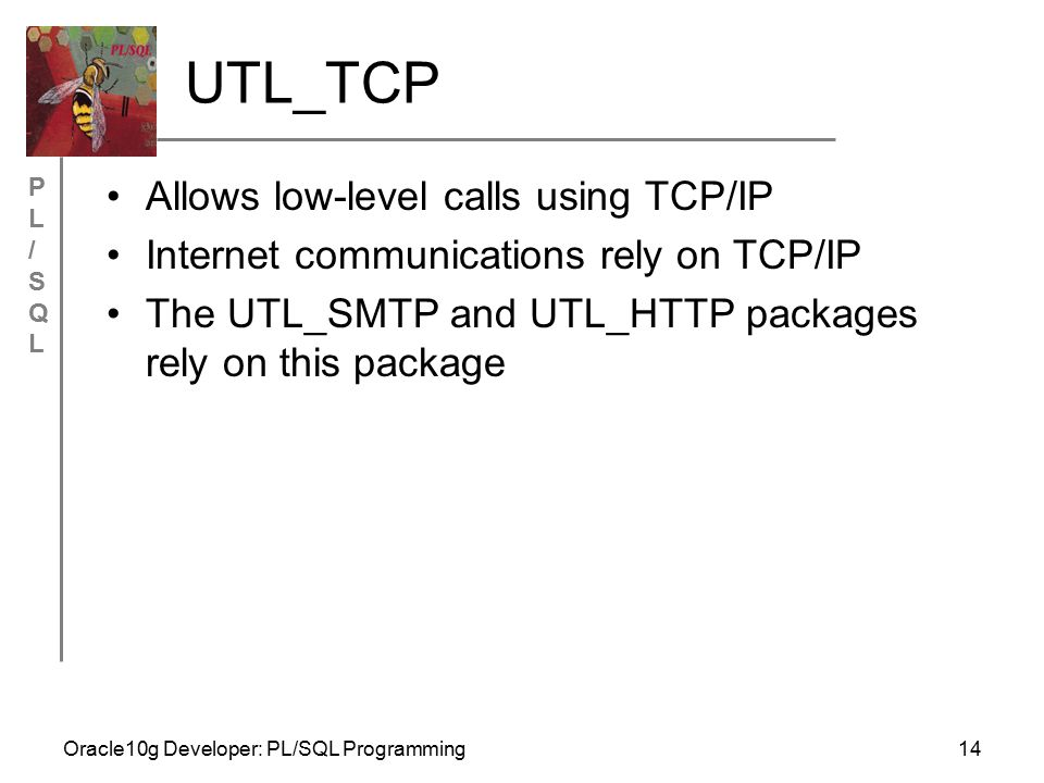 PL/SQLPL/SQL Oracle10g Developer: PL/SQL Programming14 UTL_TCP Allows low-level calls using TCP/IP Internet communications rely on TCP/IP The UTL_SMTP and UTL_HTTP packages rely on this package