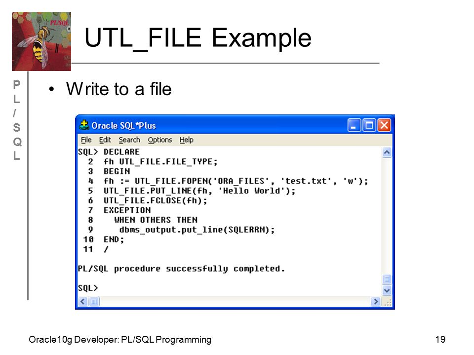 PL/SQLPL/SQL Oracle10g Developer: PL/SQL Programming19 UTL_FILE Example Write to a file