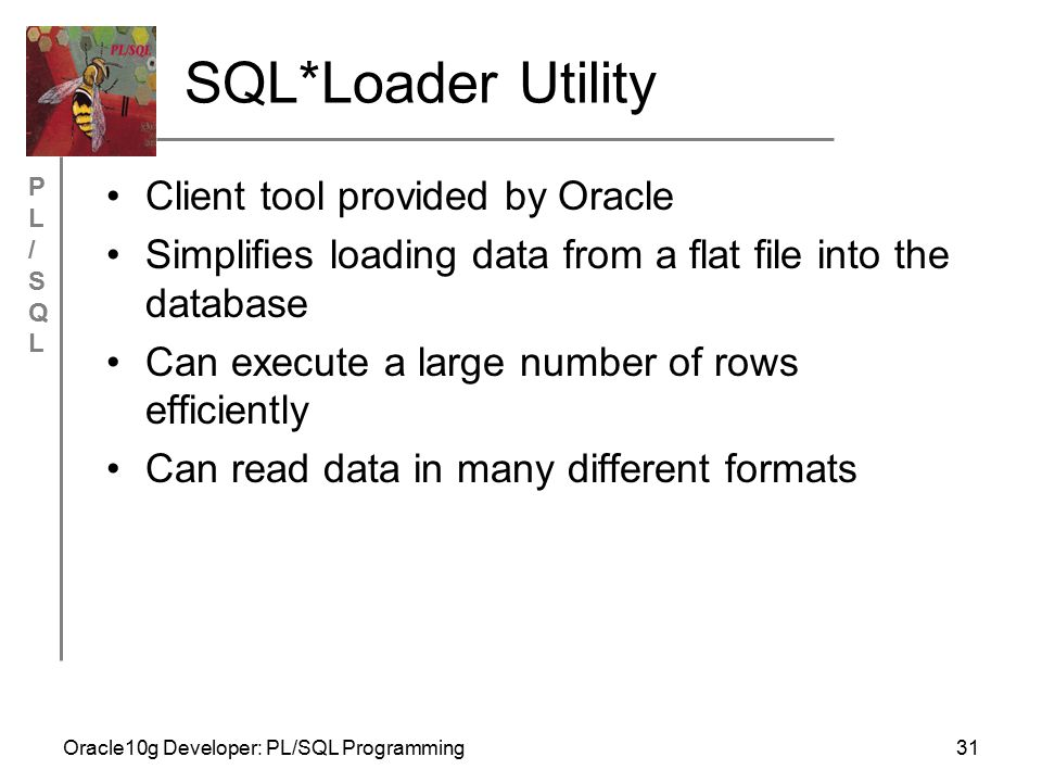PL/SQLPL/SQL Oracle10g Developer: PL/SQL Programming31 SQL*Loader Utility Client tool provided by Oracle Simplifies loading data from a flat file into the database Can execute a large number of rows efficiently Can read data in many different formats
