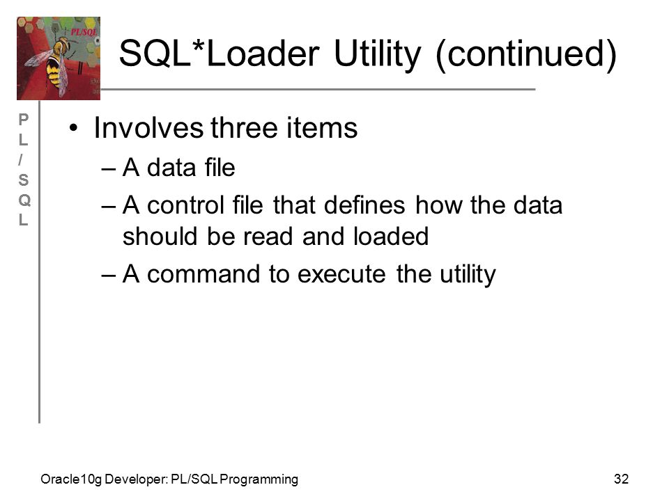 PL/SQLPL/SQL Oracle10g Developer: PL/SQL Programming32 SQL*Loader Utility (continued) Involves three items –A data file –A control file that defines how the data should be read and loaded –A command to execute the utility