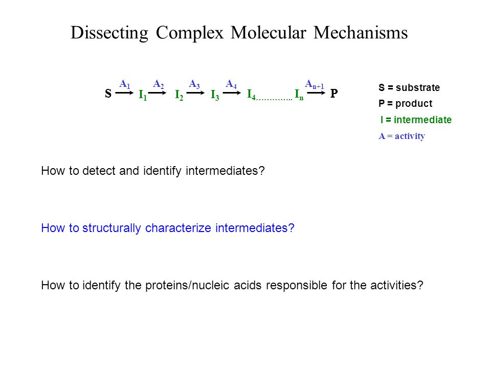 Nucleic Acids Structural Analysis of Intermediates Size Shape DS versus SS Topology Modifications Covalent Linkages Strand Pairing Examples of structural features that can be monitored Proteins Modifications Ligand Binding Conformation Covalent Linkages Cofactor (NTP) Status Complexes Composition Stoichiometry Conformation Interacting Sequences Interacting Domains Strand Polarity Sequence