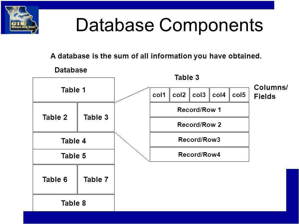 Database Components Table 8 Table 6Table 7 Table 5 Table 4 Table 2Table 3 Table 1 A database is the sum of all information you have obtained.
