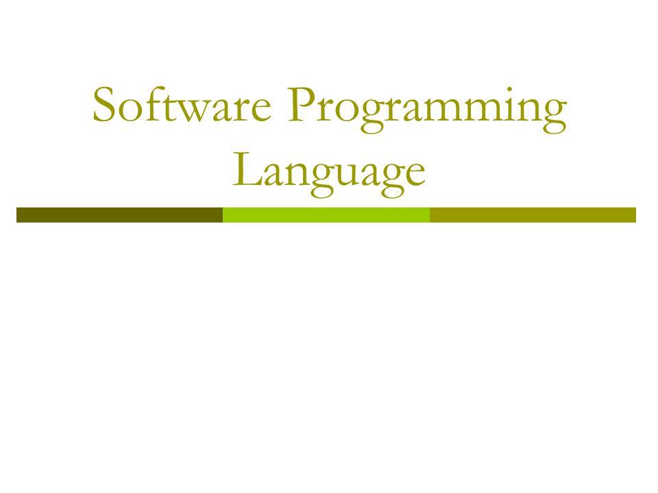 Software Programming Language