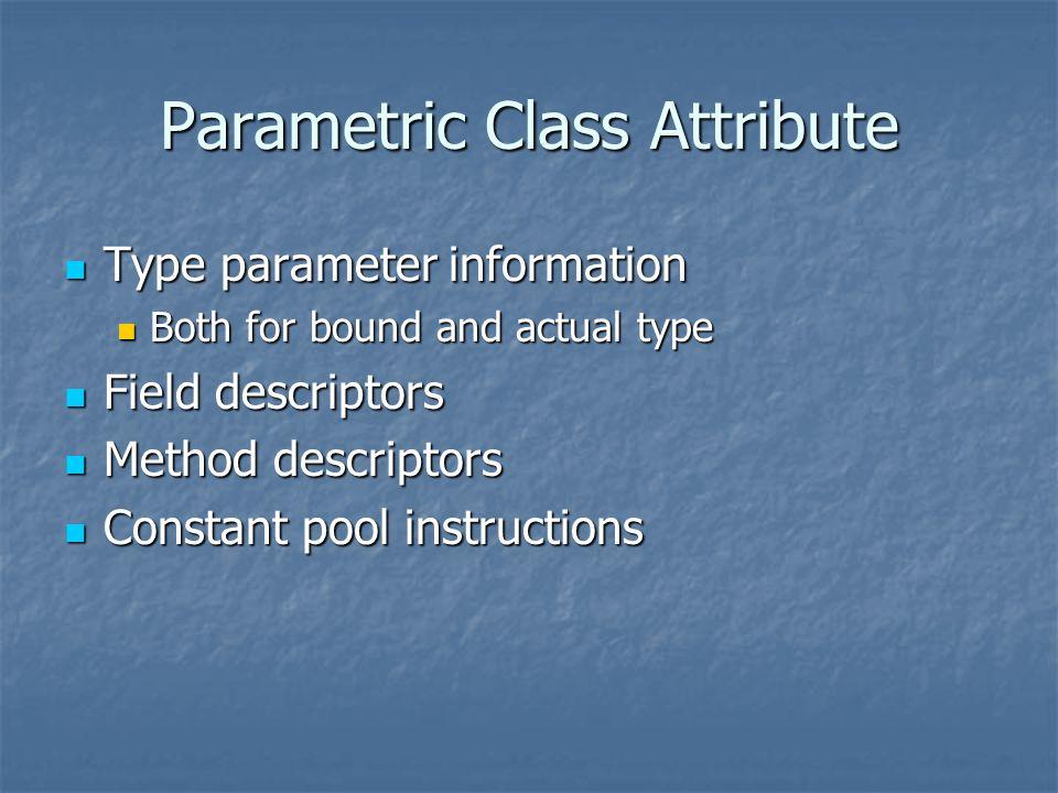 Parametric Class Attribute Type parameter information Type parameter information Both for bound and actual type Both for bound and actual type Field descriptors Field descriptors Method descriptors Method descriptors Constant pool instructions Constant pool instructions
