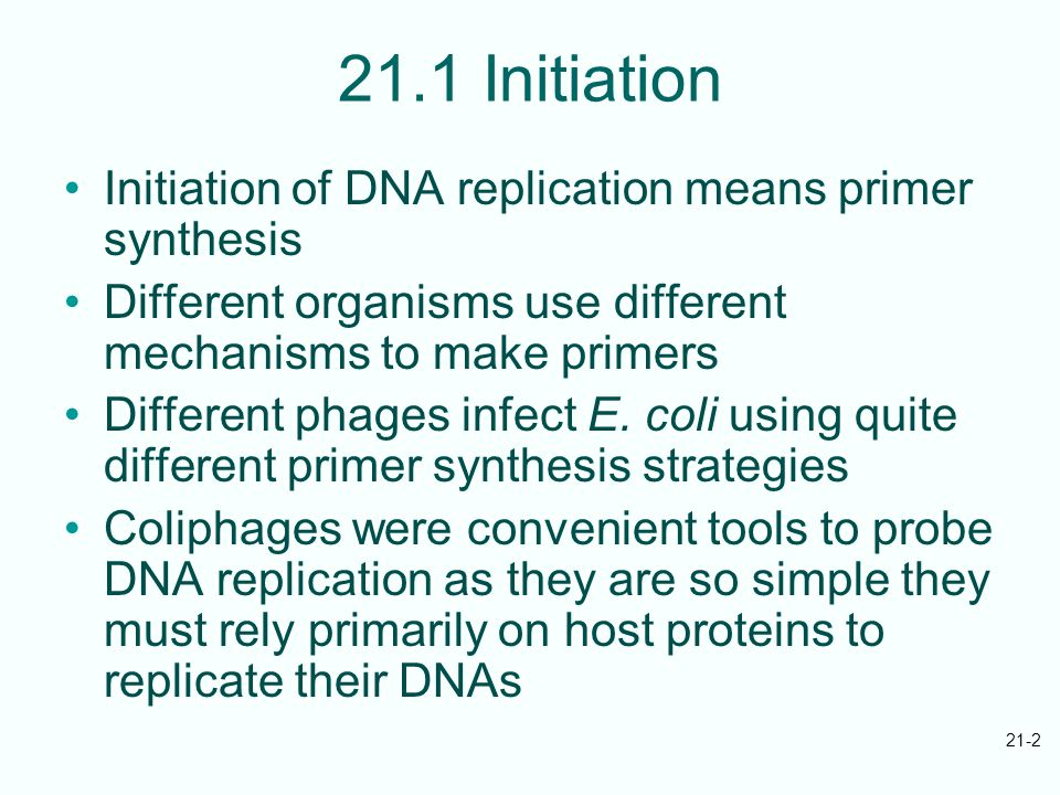 21-2 21.1 Initiation Initiation of DNA replication means primer synthesis Different organisms use different mechanisms to make primers Different phages infect E.