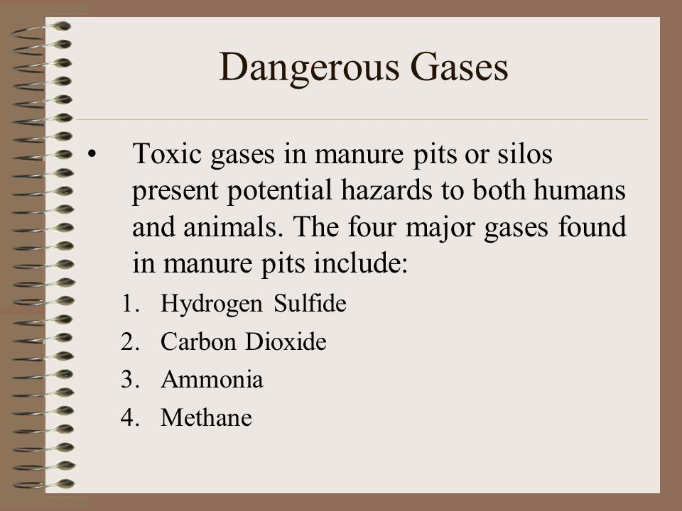 Dangerous Gases Toxic gases in manure pits or silos present potential hazards to both humans and animals. The four major gases found in manure pits in