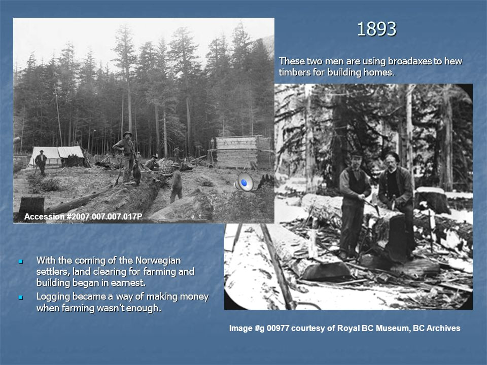 1893 With the coming of the Norwegian settlers, land clearing for farming and building began in earnest.