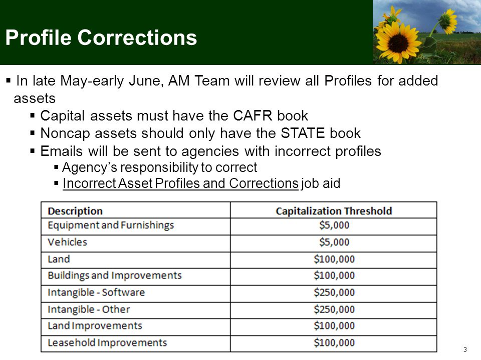 3 Profile Corrections  In late May-early June, AM Team will review all Profiles for added assets  Capital assets must have the CAFR book  Noncap assets should only have the STATE book  Emails will be sent to agencies with incorrect profiles  Agency's responsibility to correct  Incorrect Asset Profiles and Corrections job aid