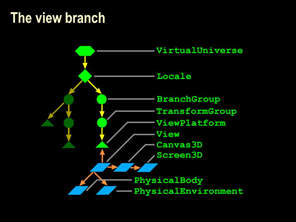 The view branch