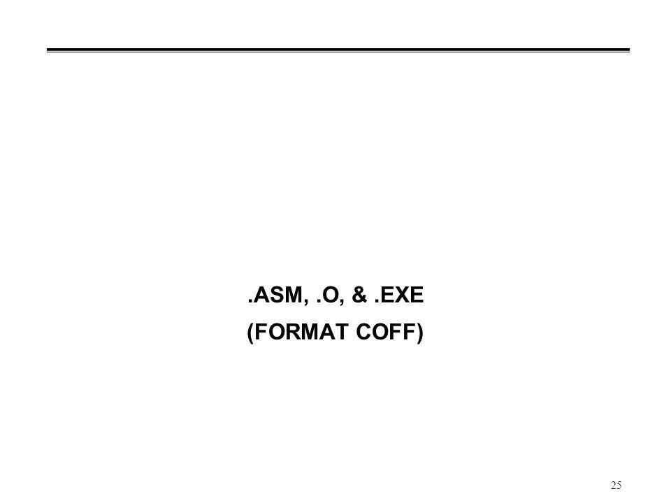 25.ASM,.O, &.EXE (FORMAT COFF)
