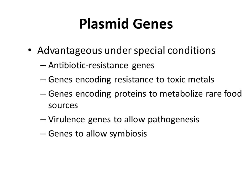 Plasmid Genes Advantageous under special conditions – Antibiotic-resistance genes – Genes encoding resistance to toxic metals – Genes encoding proteins to metabolize rare food sources – Virulence genes to allow pathogenesis – Genes to allow symbiosis